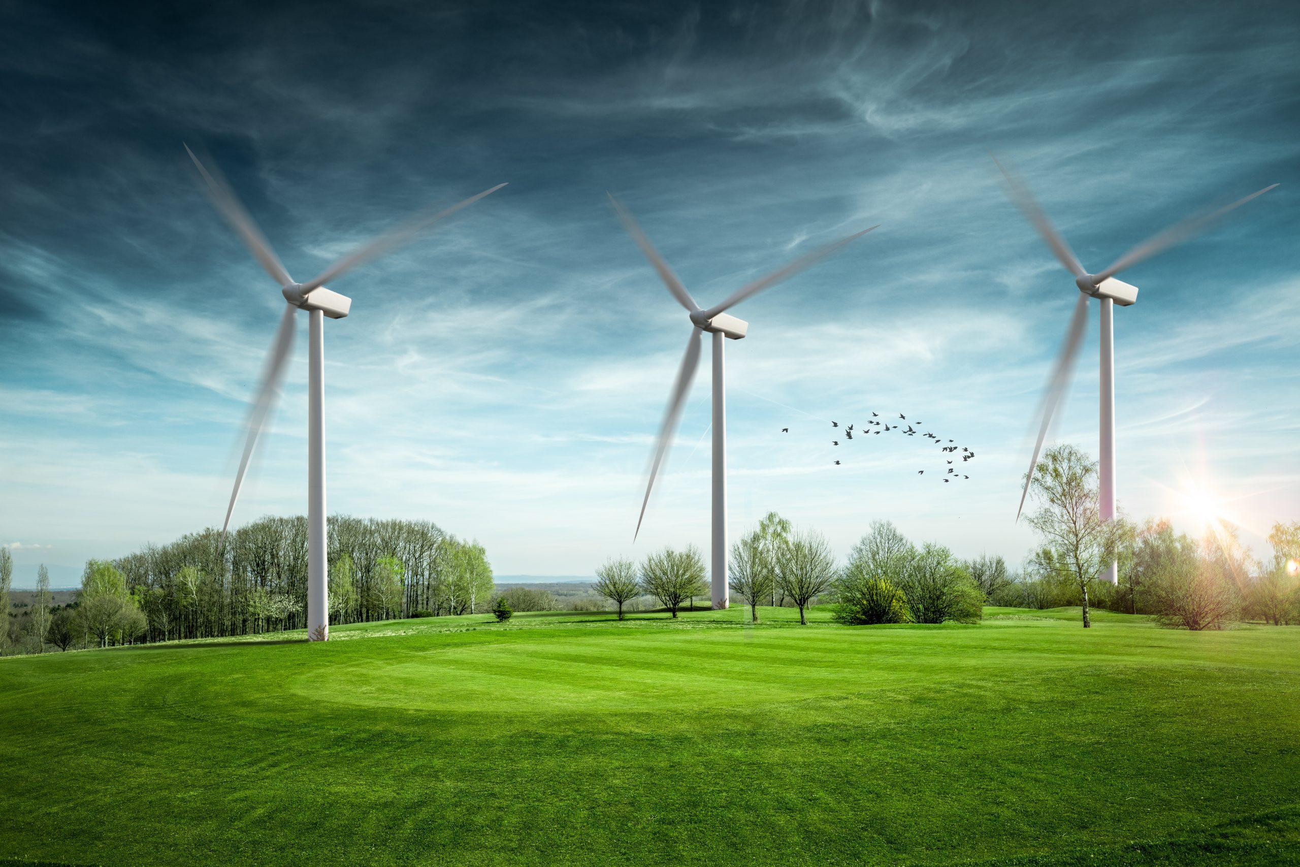 Energy Knect's Expert Insight Newsletter, Vol 1